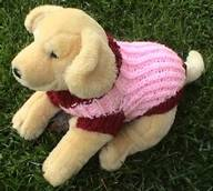 dog toy sweater